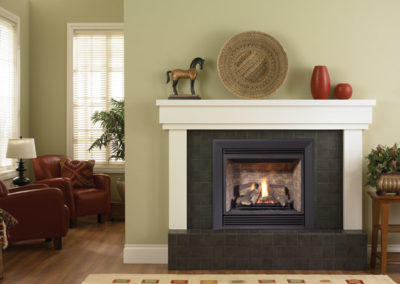 Regency Bellavisa B36XT Gas Fireplace Insert