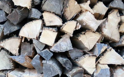 The Best Firewood For Your Stove, Insert Or Fireplace